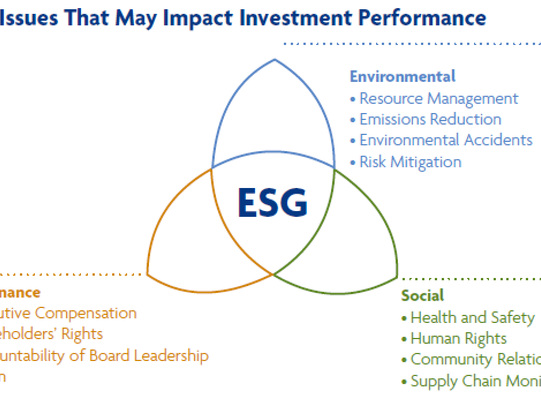 ESG = Excessive Share-price Growth