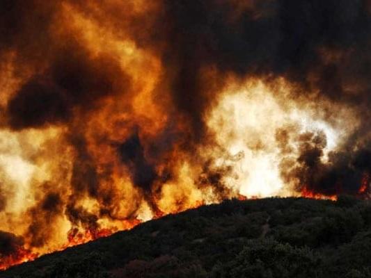 California Governor Gavin Newsom Signs Bill For $21 Billion Wildfire Fund