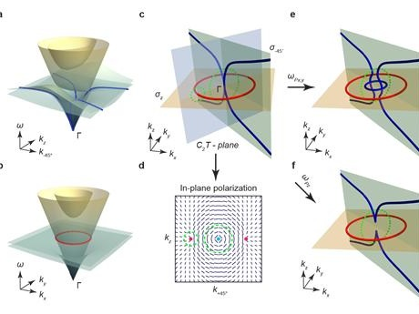 Intrinsic in-plane nodal chain and generalized quaternion charge protected nodal link in photonics