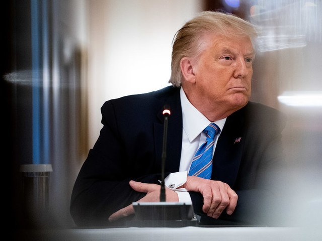 In New Book, Trump's Niece Describes Him as Still a Child, Seeking Attention