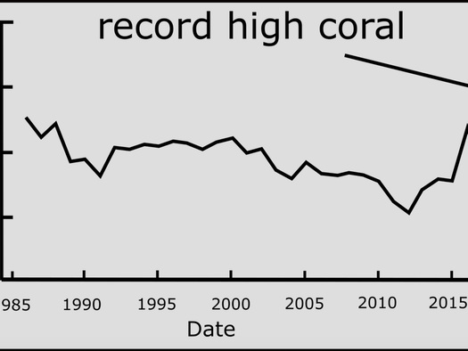 Record Coral Cover Of Great Barrier Reef Shames Climate Alarmists, Media