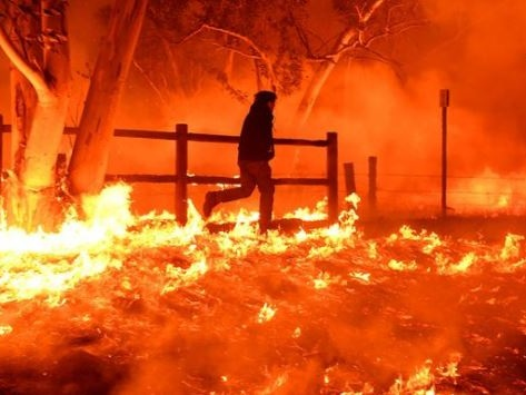 """It Was Like A War Zone"" - Heavy Winds Push Wildfires Toward San Diego As Bel Air Burns"