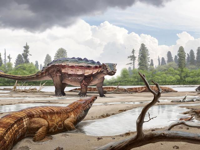 Mystery of Spiky-Skulled Utah Dinosaur Solved