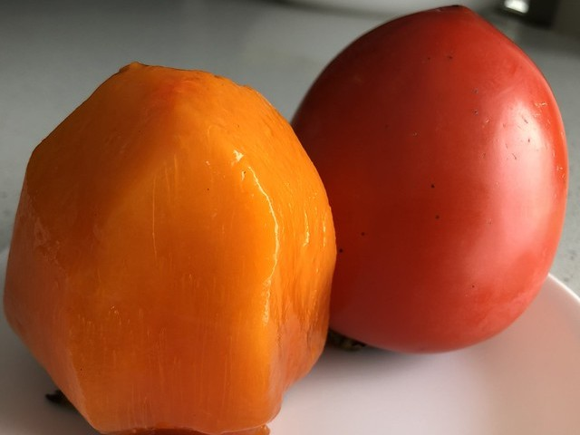 Persimmon Skins and Other Foods that Can Cause Obstruction in the GI tract