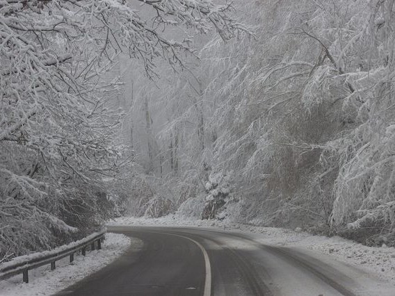Winter Brain: Why Do We Feel Sad and Tired in Winter?