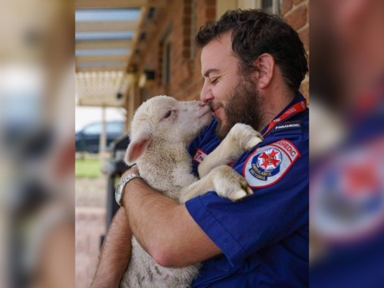 Guy Can't Stop Saving Orphaned Baby Lambs
