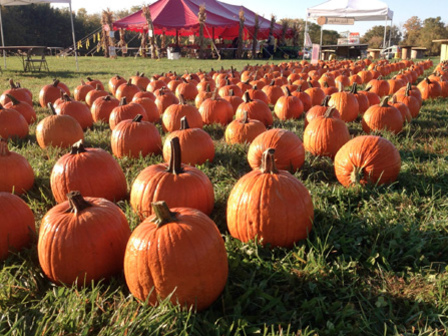 Franklin County Visitors Bureau Recommends Lots of Spooky Fall Fun In...
