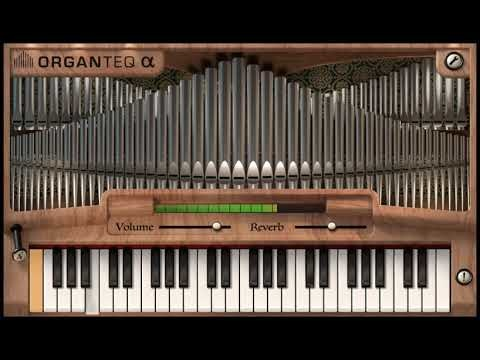 Free Physically Modelled Pipe Organ