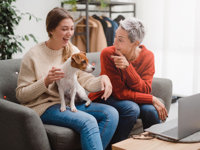 How To Save Thousands of Dollars in Vet Bills