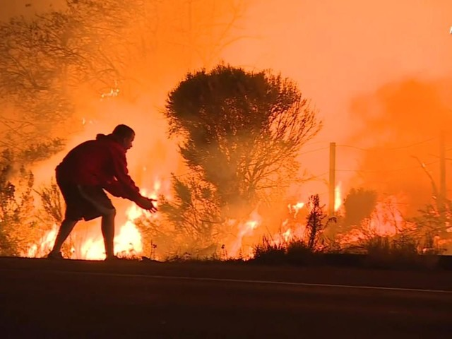 VIDEO: Man risks life to save wild rabbit from California wildfire