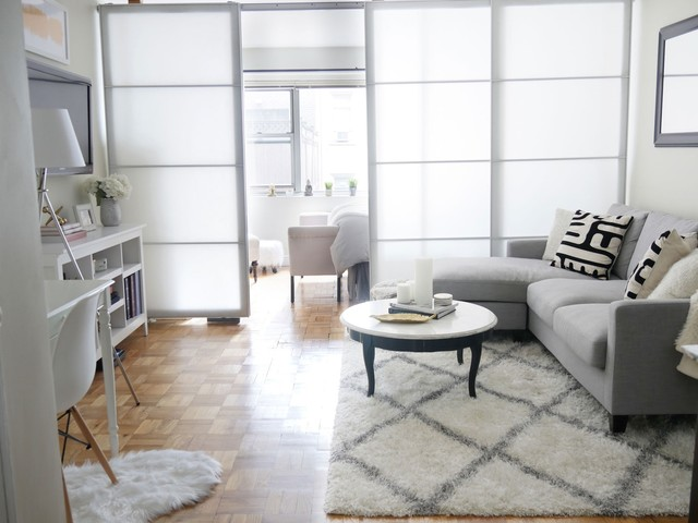 A Studio Apartment Goes from Fine to Fabulous Thanks to a Faux Wall — House Call