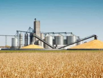 Corn Industry Crushed By Shocking Ethanol Decision