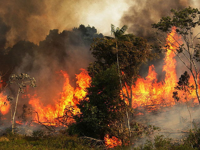 NASA, scientists crush climate change hysteria around Amazon fires — here's the truth