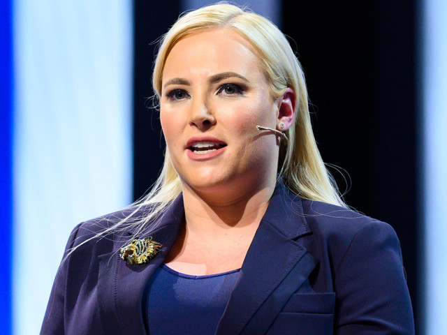 Meghan McCain says the media portrays Republicans as 'evil'