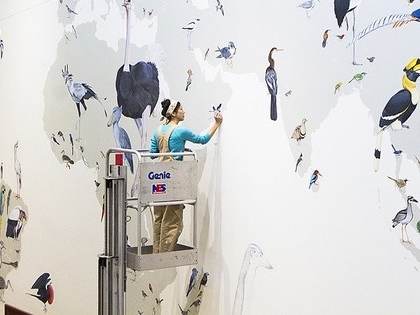 Massive Wall of Birds is the first mural depicting all modern bird families (Video)