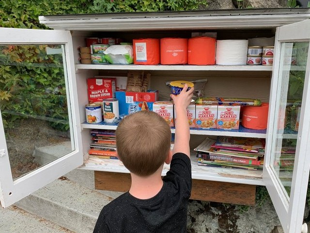 With Washington libraries closed due to coronavirus, Little Free Libraries in Seattle have gained new life