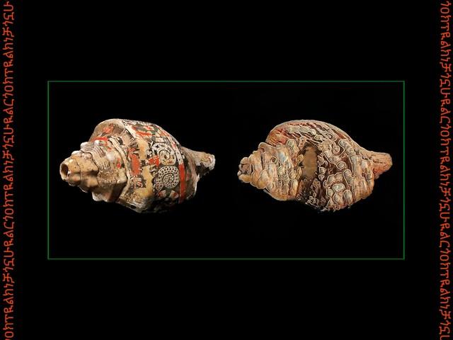 Transfiguración: decolonizing AI, in Hexorcismos' shamanistic music and art