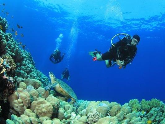Last Minute Travel Deals at Saint Lucian Resort, Windjammer Landing Villa Beach Resort