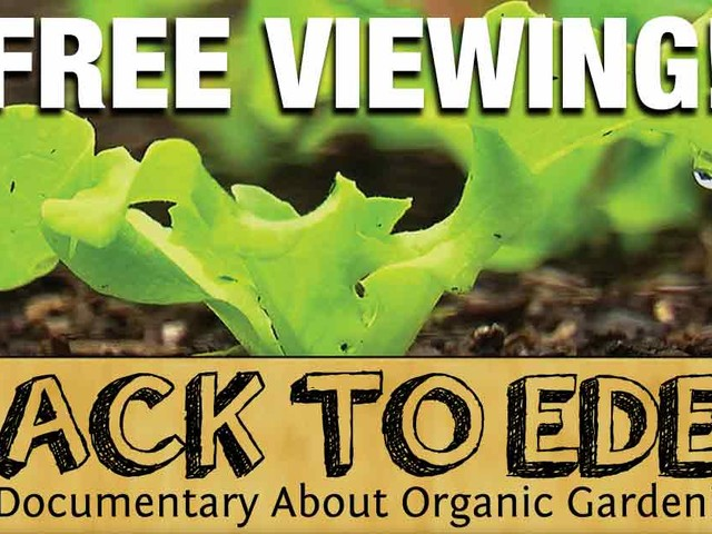 Back to Eden — How Simple, Natural Methods Can Take the Work Out of Gardening, and Boost Your Harvest
