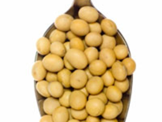 New Study Shows Soy No Help for Bone Loss or Hot Flashes