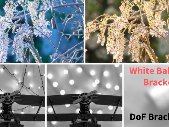 6 Types of Bracketing Your Camera Can Do and How to Use Them