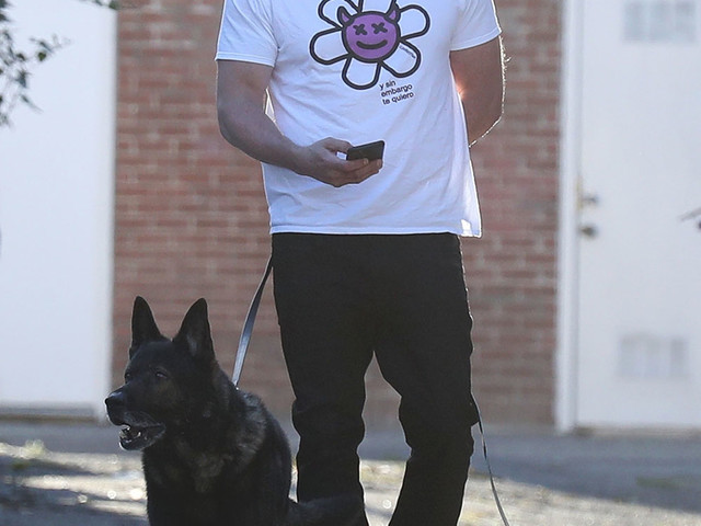 Ben Affleck got a home haircut and is walking Ana's dog without her