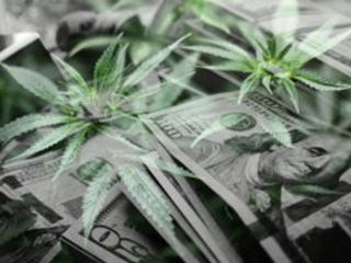 This Is One of the Top Marijuana Stocks to Buy in 2019