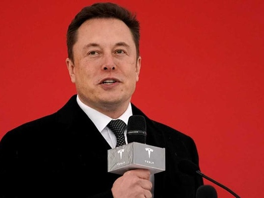 """Dear Mr. Unicorn"": Elon Musk, Greenlight CEO Taunt Each Other On Twitter"