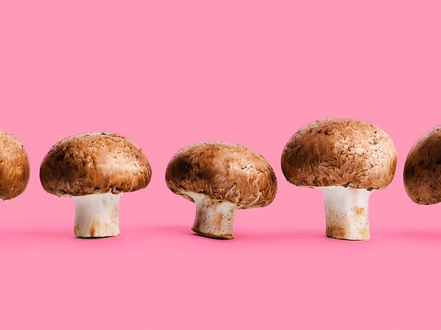 Portobello, Ello, Ello, Eh, Eh, Eh: The Nutrition and Benefits of Portobello Mushrooms