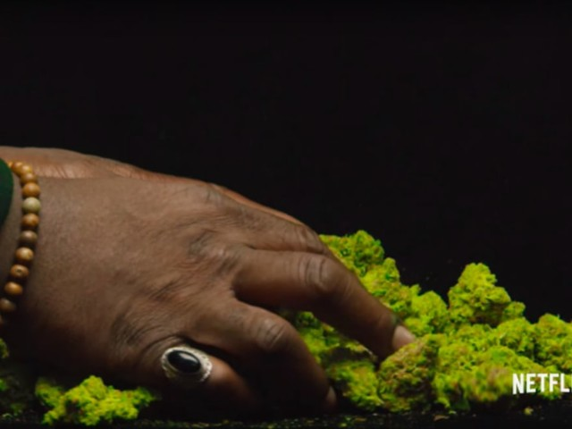 Netflix Weed Documentary 'Grass Is Greener' Gets a Trailer f/ Snoop Dogg