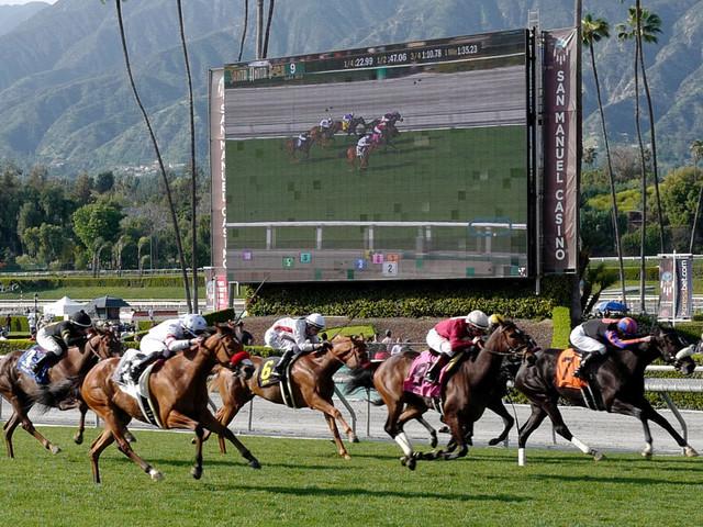 26th horse dies at Santa Anita since December, third in 10 days