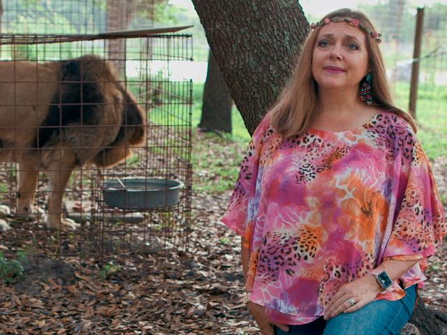 Florida Sheriff Reopening Case of Carole Baskin's Missing Husband After 'Tiger King' Success