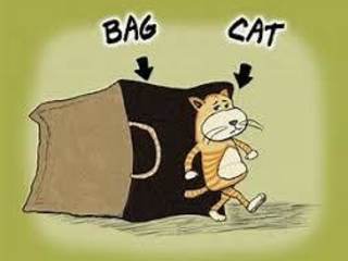 """The Fed """"Just Let The Cat Out Of The Bag"""", Admits Being Forced To Fuel Asset Bubble"""