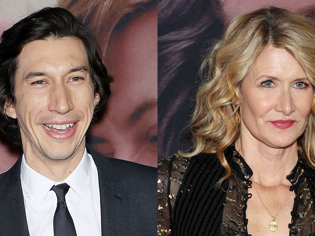 Adam Driver & Laura Dern Screen 'Marriage Story' in NYC