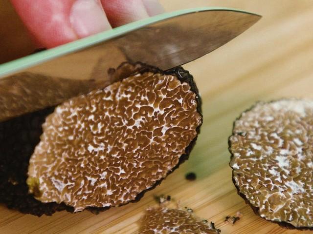 Rare Italian white truffles cost over $4000 per kilo — here's why real truffles are so expensive