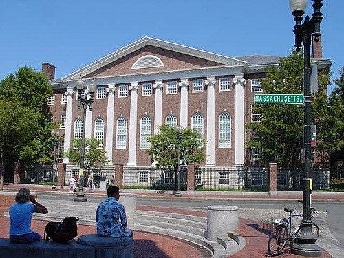 How to Write the Perfect Harvard Essay: 3 Expert Tips