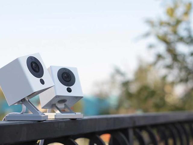 Wyze Camera Breach Exposes 2.4 Million User Data