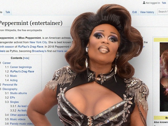 Is this Wikipedia editor who deadnamed a trans celebrity a high-profile film critic?