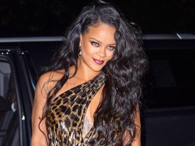 Rihanna Sizzles in a Fierce Leopard Print Dress at Her Visual Autobiography Launch