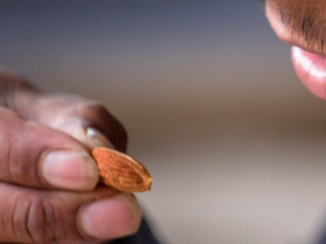Almonds and cashews aren't as high-calorie as we thought, and Kind is cutting the calorie counts of its bars as a result