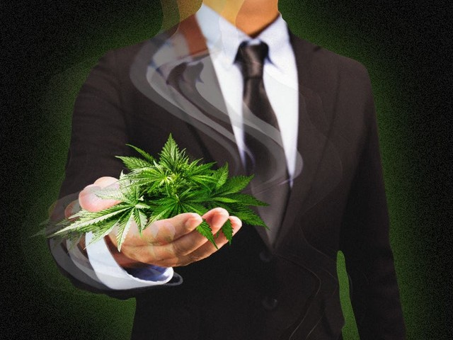 Here are the top 14 venture-capital firms making deals in the cannabis industry, and where they're looking to place their next bets