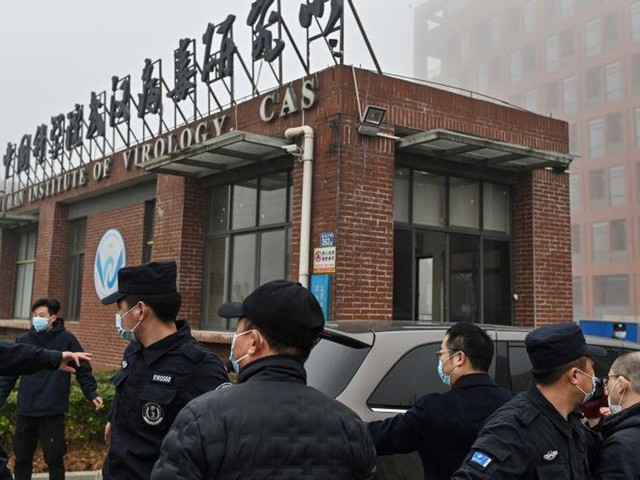 GOP report finds Wuhan lab was carrying out suspicious activity months before the start of the pandemic