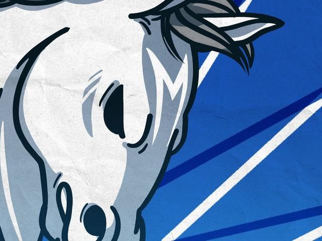 Five Reasons to Watch the Dallas Mavericks This Season