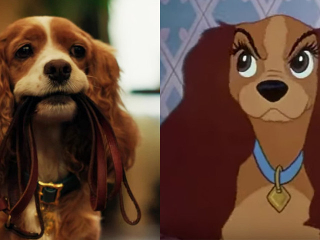 See the first trailer for Disney's live-action remake of 'Lady and the Tramp'