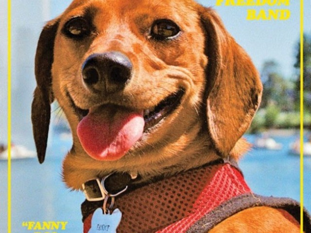 "Ty Segall & Freedom Band – ""Fanny Dog (Royal)"""