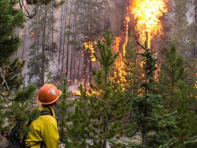 Lawsuit filed to stop big US Forest Service project in Idaho