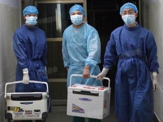 """Former Police Officer Recounts Witnessing """"Industrialized"""" Organ Harvesting In China"""