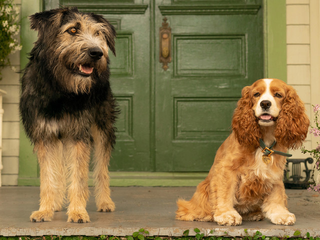 Disney+'s Live-Action 'Lady & the Tramp' Gets New Trailer - Watch!