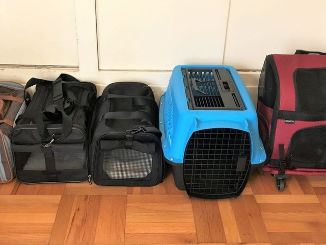 The 5 best cat carriers in 2021