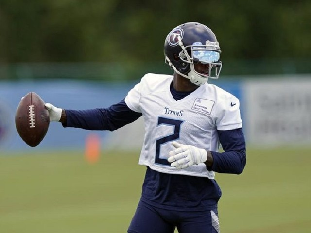 Cannabis Company Sues Tennessee Titans' Julio Jones, Others